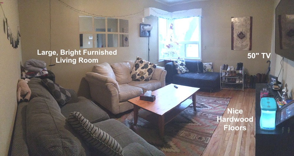 Large, Bright Furnished Living Room, with a 50 inch Smart TV and nice Hardwood Floors