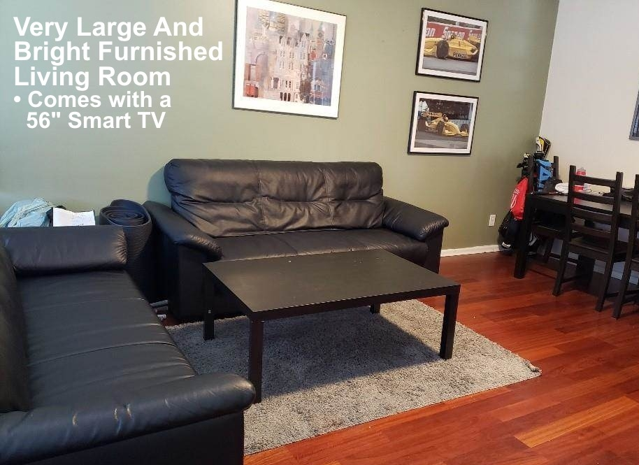 A very large and bright furnished living room, with a 56 inch Smart TV